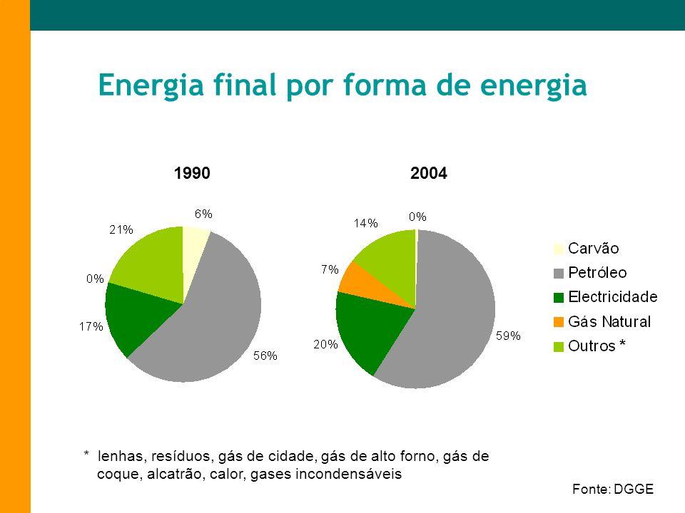 Energia final por forma de energia