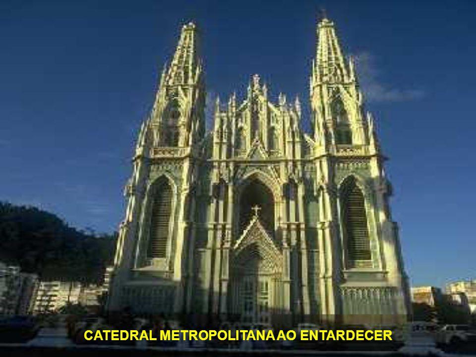 CATEDRAL METROPOLITANA AO ENTARDECER