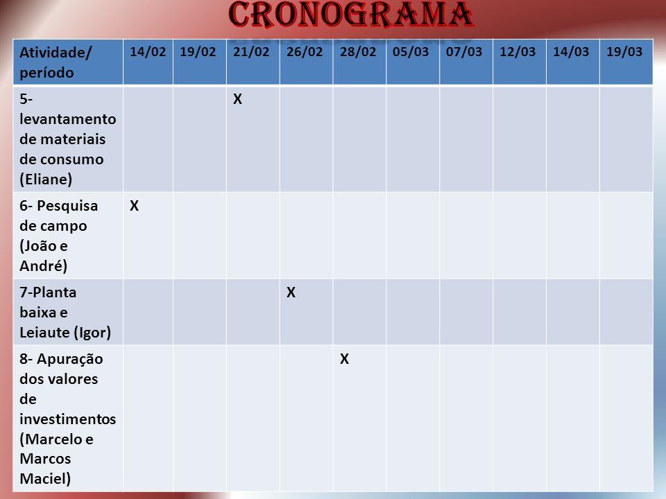 cronograma Atividade/ período