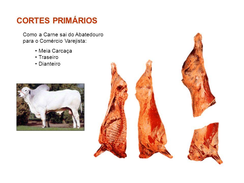 CORTES PRIMÁRIOS Como a Carne sai do Abatedouro