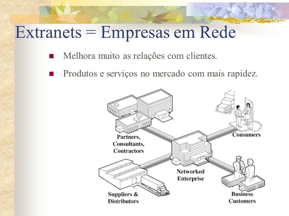 Extranets = Empresas em Rede