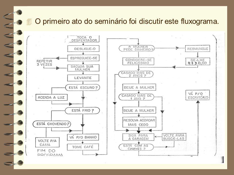 O primeiro ato do seminário foi discutir este fluxograma.