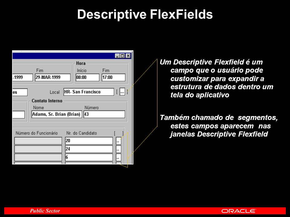 Descriptive FlexFields