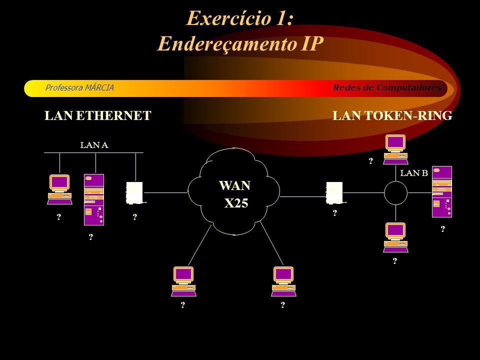 Exercício 1: Endereçamento IP