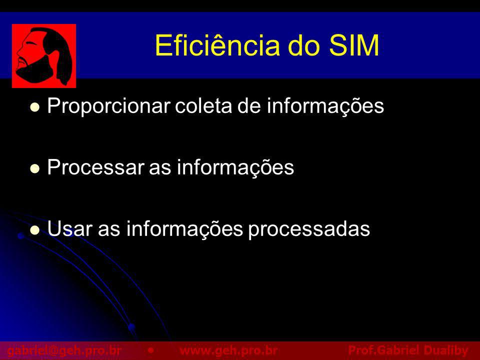 Eficiência do SIM Proporcionar coleta de informações