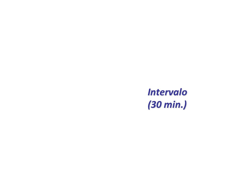 Intervalo (30 min.)