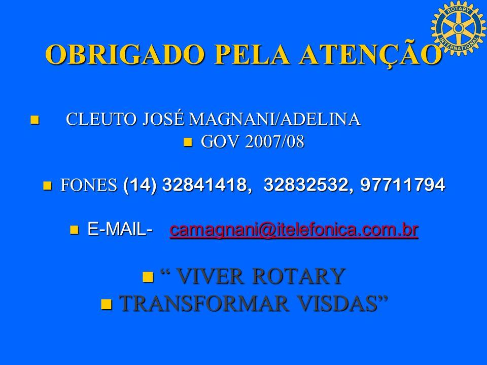 E-MAIL- camagnani@itelefonica.com.br