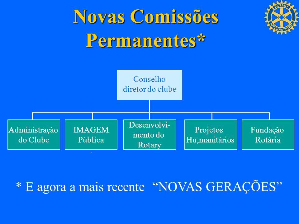 Novas Comissões Permanentes*