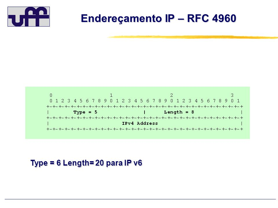Endereçamento IP – RFC 4960 Type = 6 Length= 20 para IP v6 44