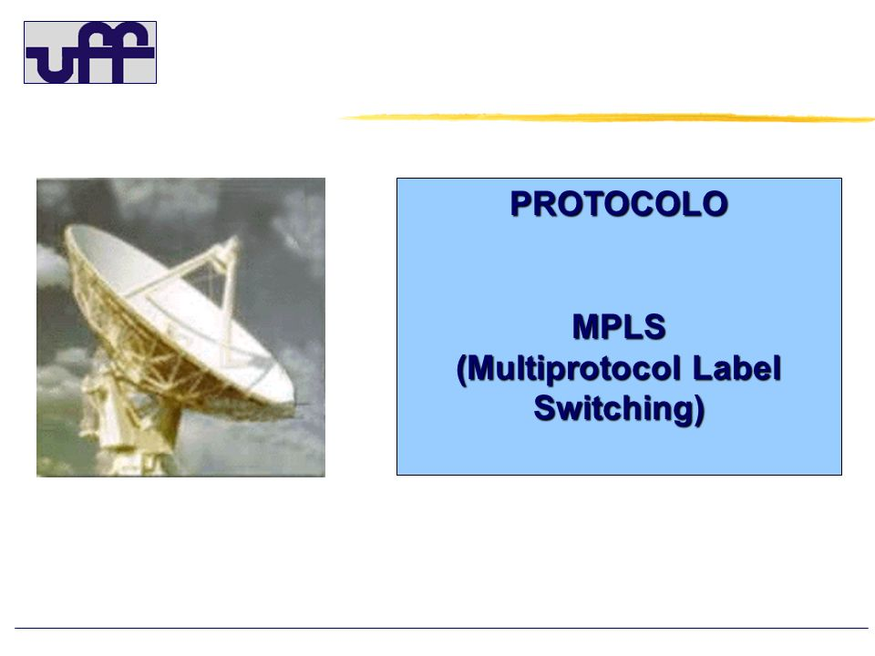 (Multiprotocol Label Switching)