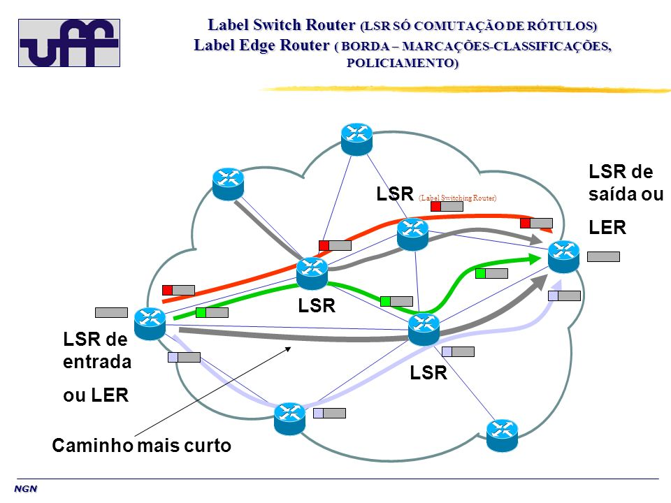 LSR (Label Switching Router)