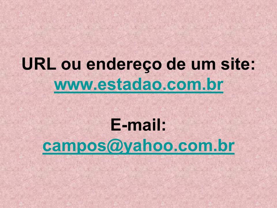 URL ou endereço de um site: www. estadao. com. br E-mail: campos@yahoo