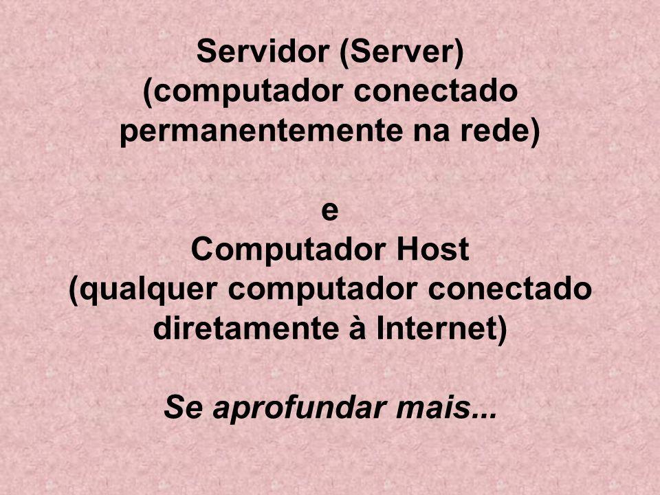 Servidor (Server) (computador conectado permanentemente na rede) e Computador Host (qualquer computador conectado diretamente à Internet) Se aprofundar mais...