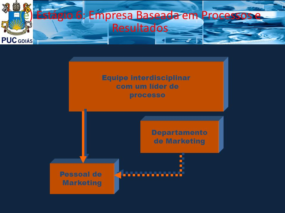(e) Estágio 6: Empresa Baseada em Processos e Resultados