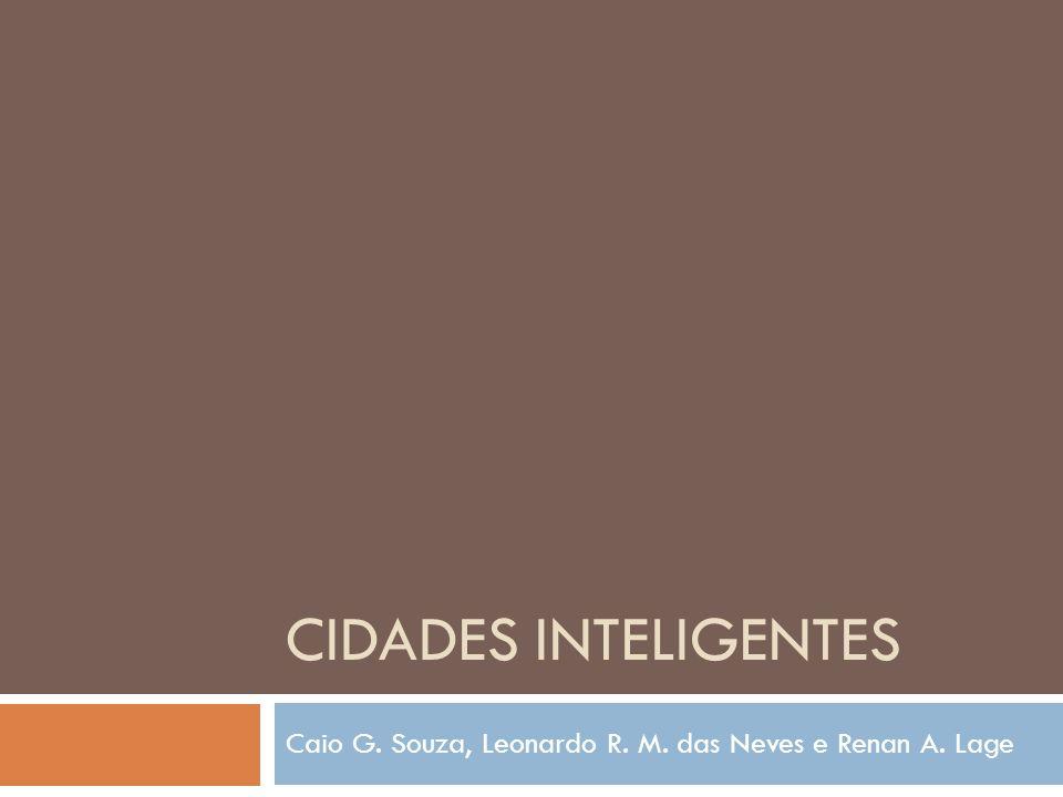 Caio G. Souza, Leonardo R. M. das Neves e Renan A. Lage