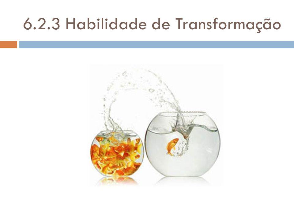 6.2.3 Habilidade de Transformação