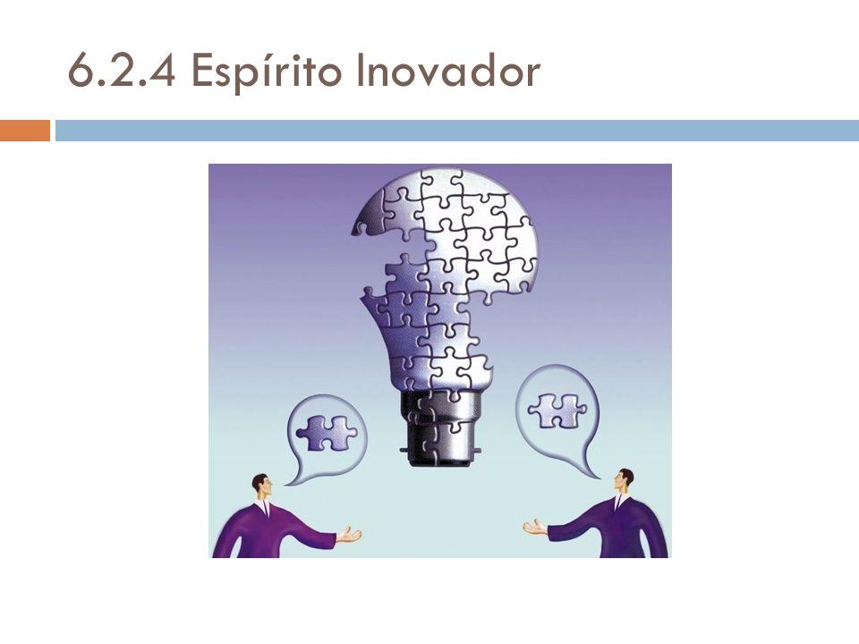 6.2.4 Espírito Inovador