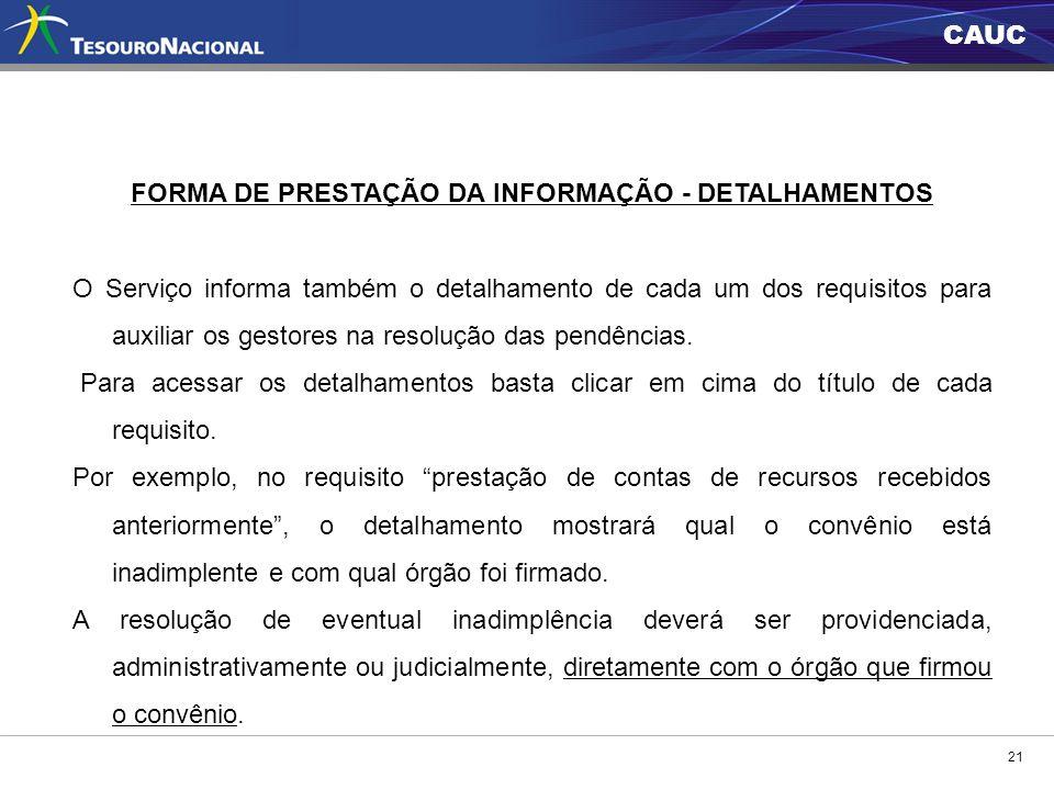 FORMA DE PRESTAÇÃO DA INFORMAÇÃO - DETALHAMENTOS