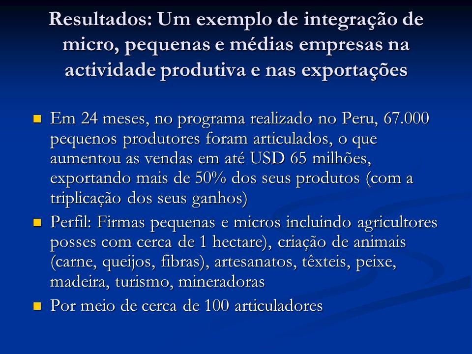 Resultados: Um exemplo de integração de micro, pequenas e médias empresas na actividade produtiva e nas exportações