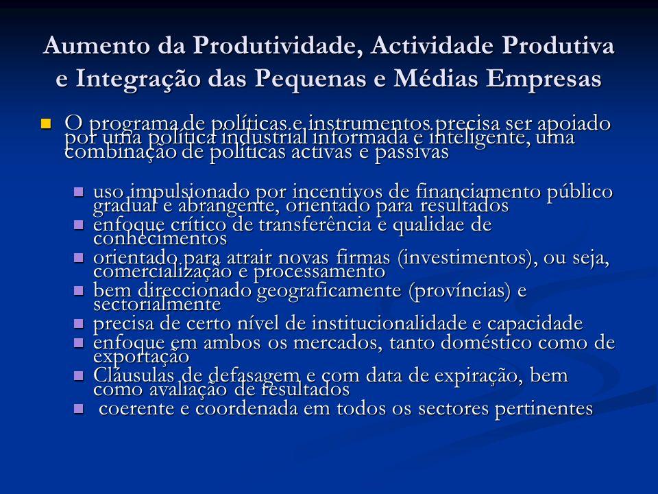 Aumento da Produtividade, Actividade Produtiva e Integração das Pequenas e Médias Empresas