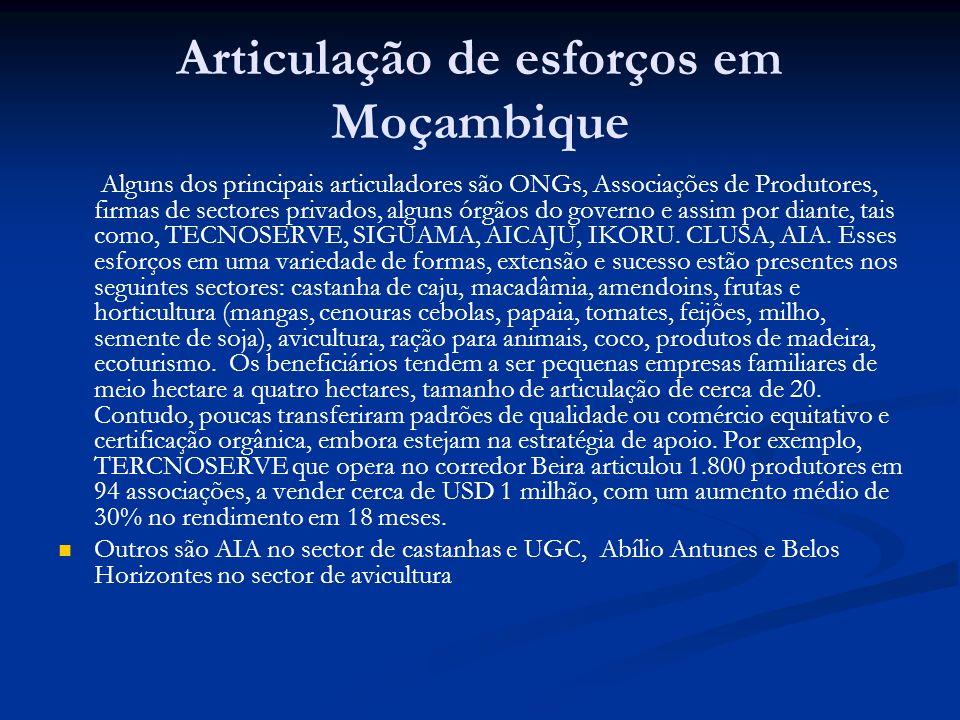 Articulação de esforços em Moçambique
