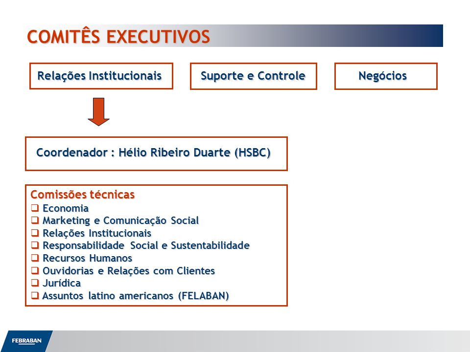 COMITÊS EXECUTIVOS Relações Institucionais Suporte e Controle Negócios
