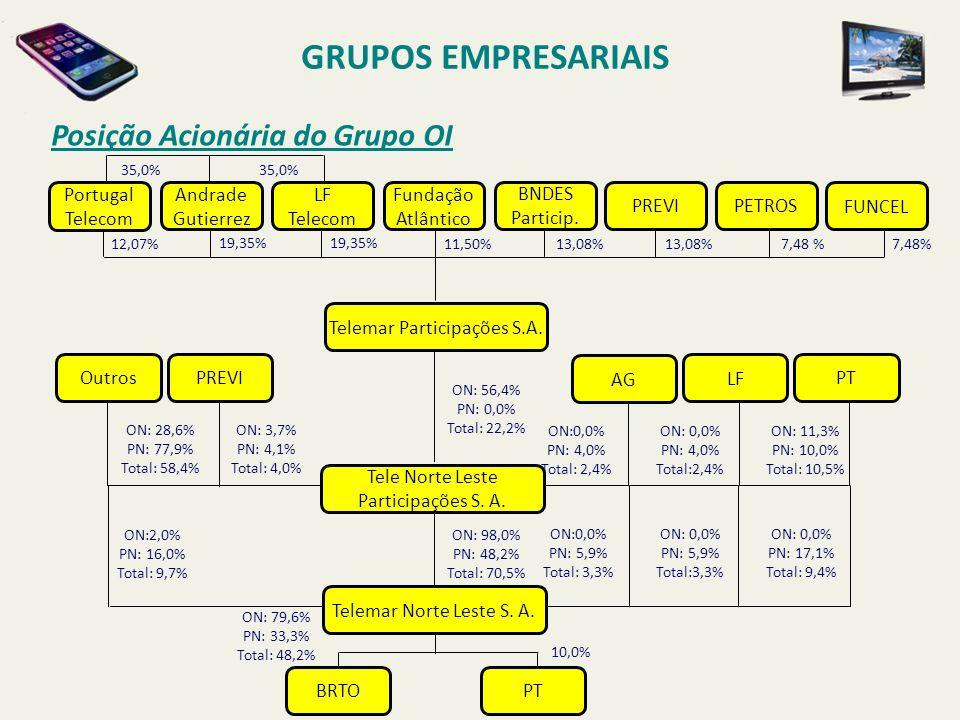 GRUPOS EMPRESARIAIS Posição Acionária do Grupo OI Portugal Telecom