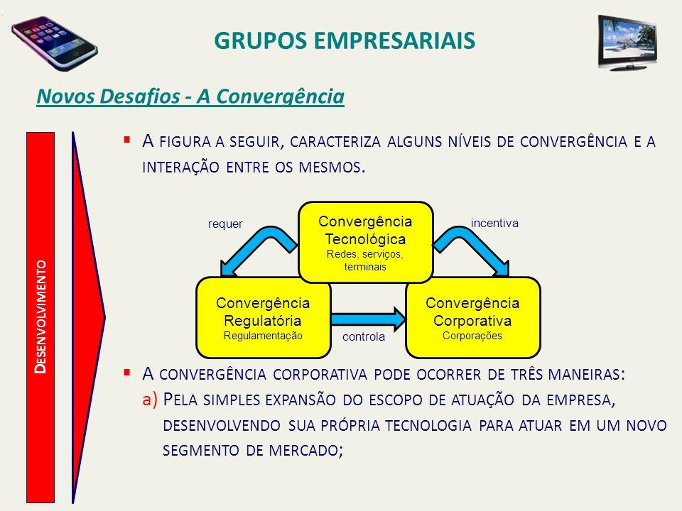 GRUPOS EMPRESARIAIS Novos Desafios - A Convergência