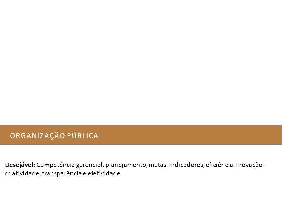 Organização pública