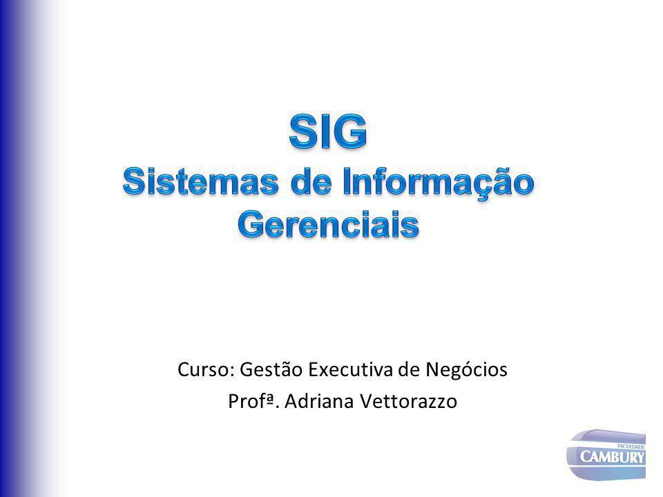 Curso: Gestão Executiva de Negócios Profª. Adriana Vettorazzo