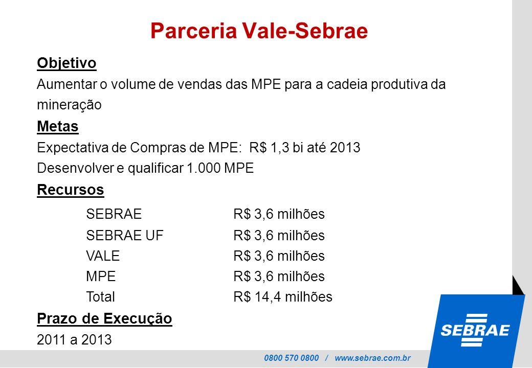 Parceria Vale-Sebrae Objetivo. Aumentar o volume de vendas das MPE para a cadeia produtiva da mineração Metas.