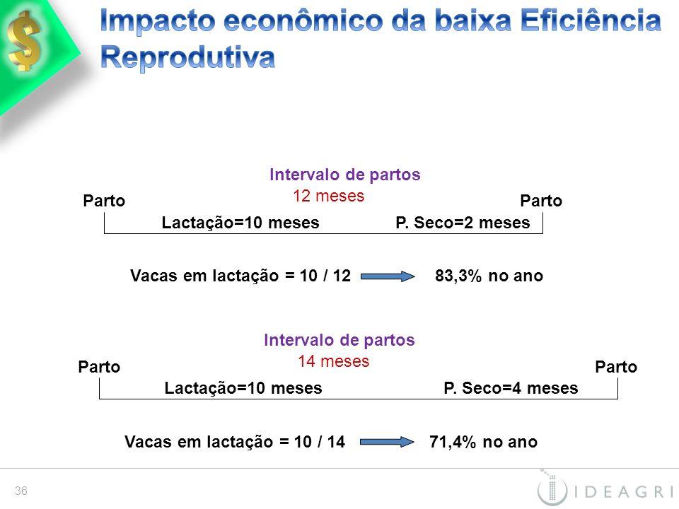 Impacto econômico da baixa Eficiência Reprodutiva