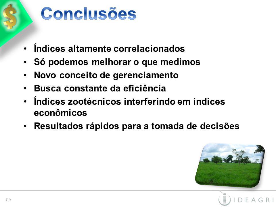 Conclusões Índices altamente correlacionados