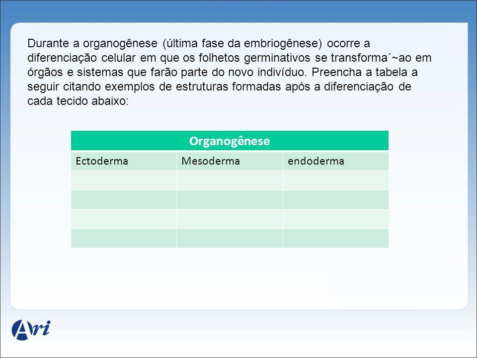 Durante a organogênese (última fase da embriogênese) ocorre a diferenciação celular em que os folhetos germinativos se transforma´~ao em órgãos e sistemas que farão parte do novo indivíduo. Preencha a tabela a seguir citando exemplos de estruturas formadas após a diferenciação de cada tecido abaixo: