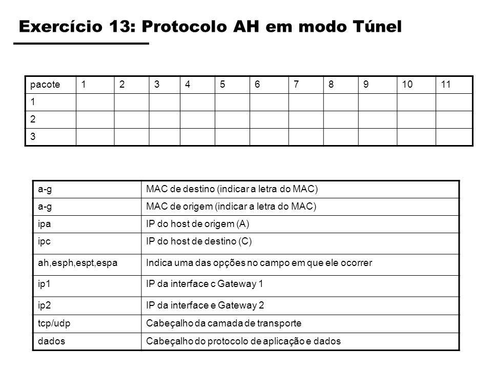 Exercício 13: Protocolo AH em modo Túnel