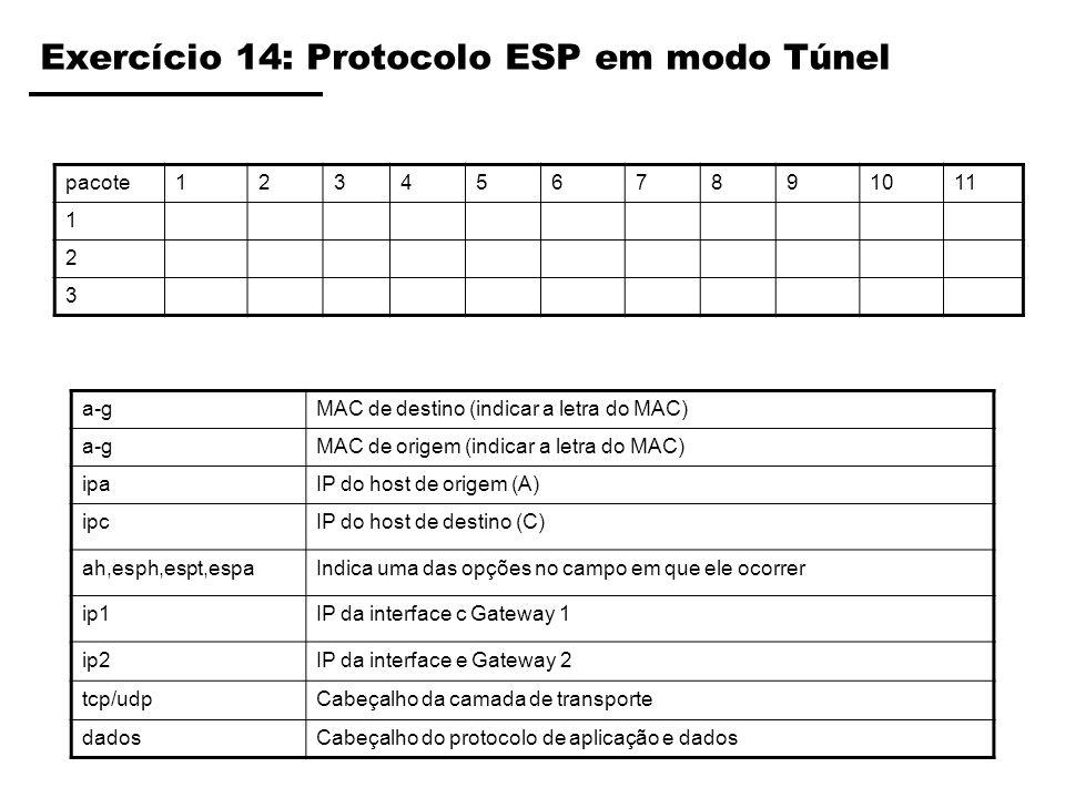 Exercício 14: Protocolo ESP em modo Túnel