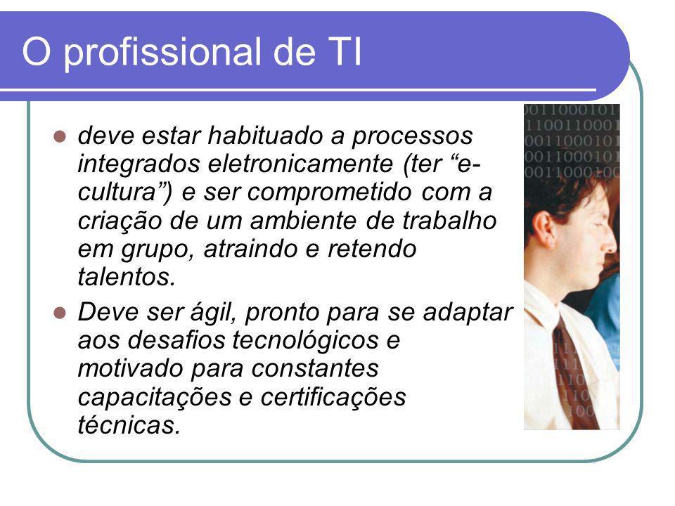 O profissional de TI