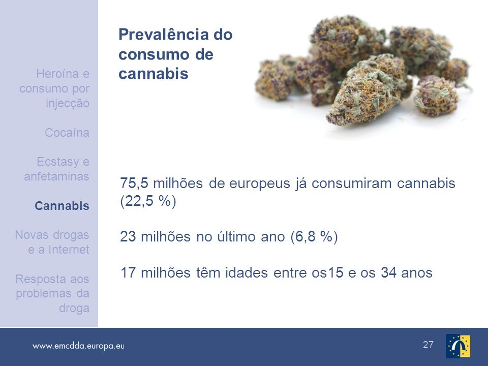 Prevalência do consumo de cannabis
