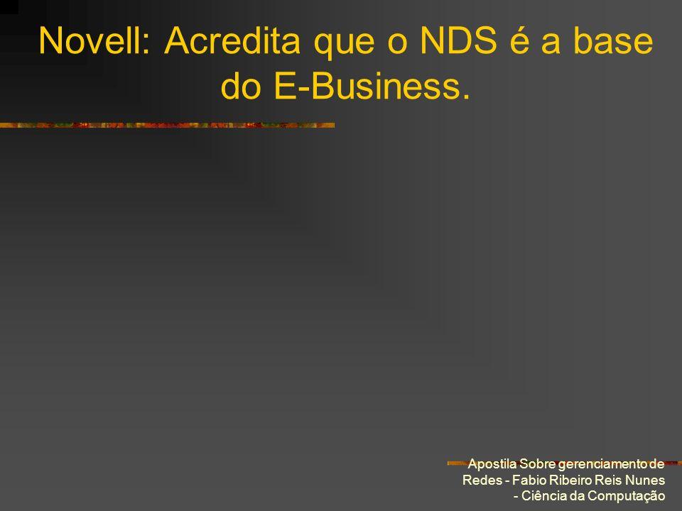 Novell: Acredita que o NDS é a base do E-Business.