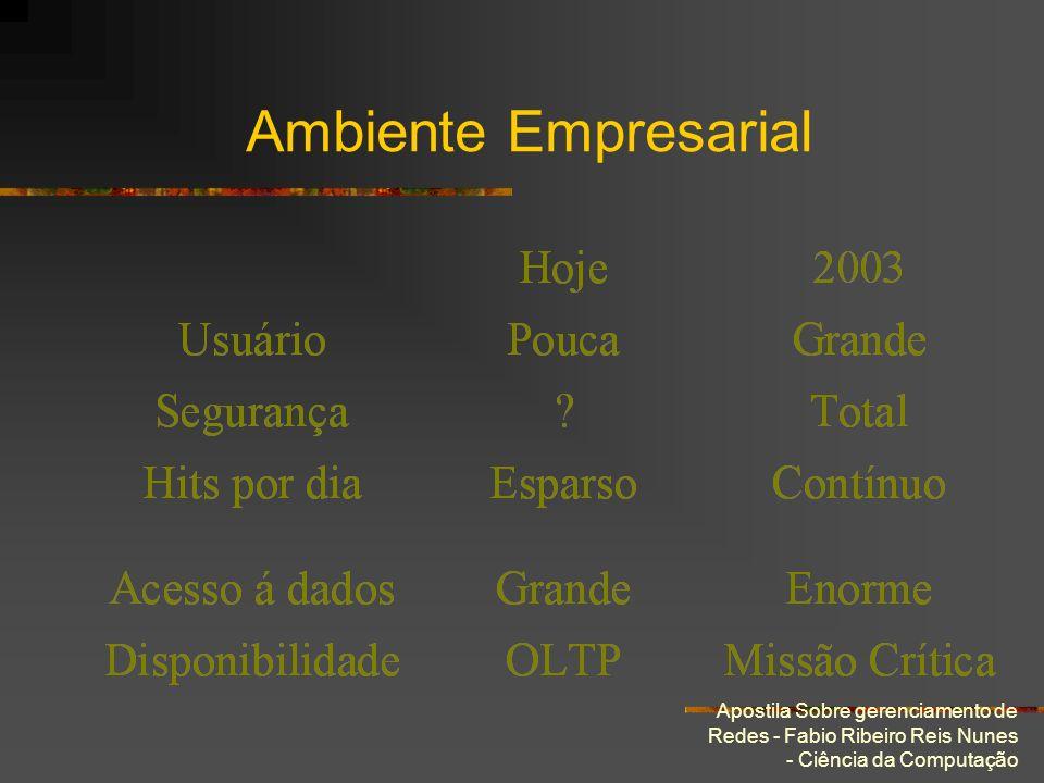 Ambiente Empresarial Apostila Sobre gerenciamento de Redes - Fabio Ribeiro Reis Nunes - Ciência da Computação.