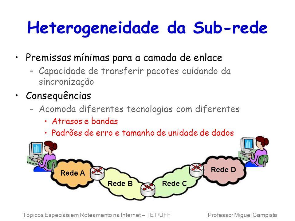 Heterogeneidade da Sub-rede