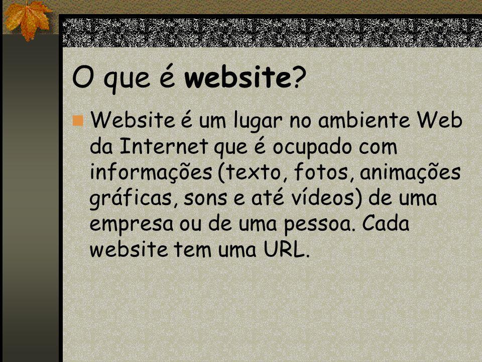 O que é website
