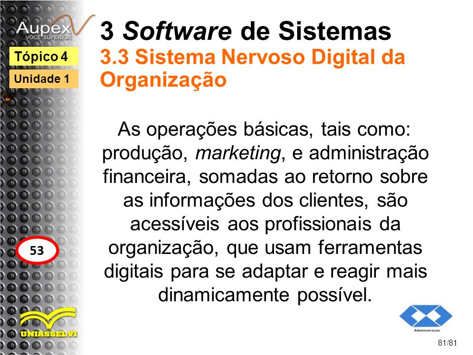3 Software de Sistemas 3.3 Sistema Nervoso Digital da Organização