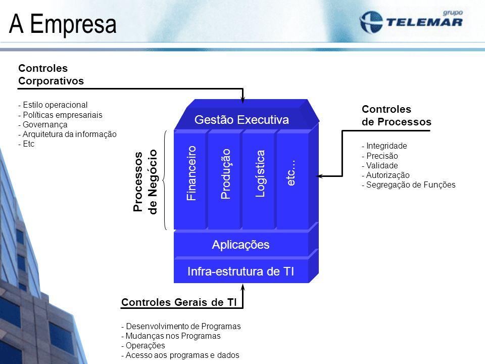 A Empresa Gestão Executiva Financeiro Processos de Negócio Produção