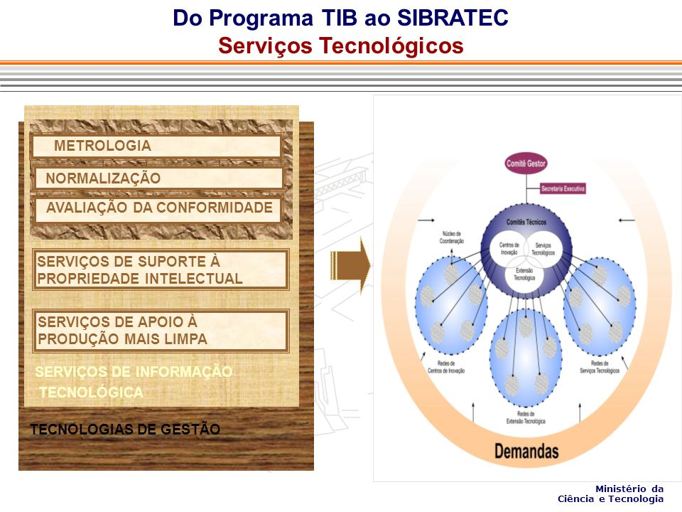 Do Programa TIB ao SIBRATEC Serviços Tecnológicos