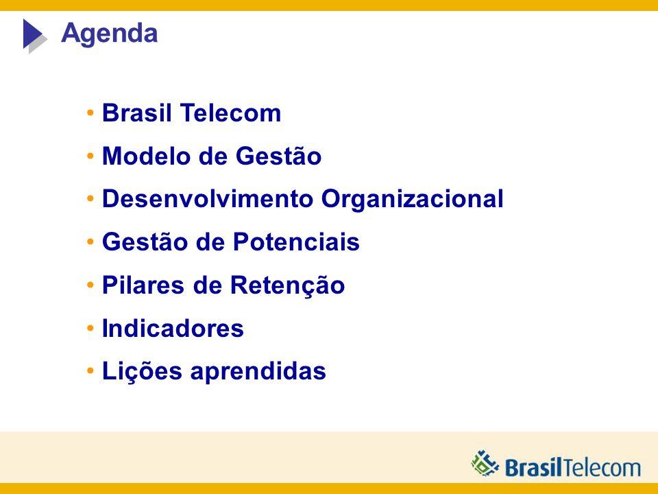 Agenda Brasil Telecom Modelo de Gestão Desenvolvimento Organizacional