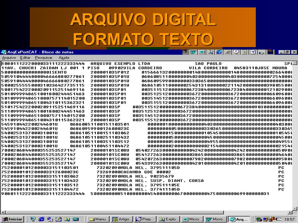 ARQUIVO DIGITAL FORMATO TEXTO
