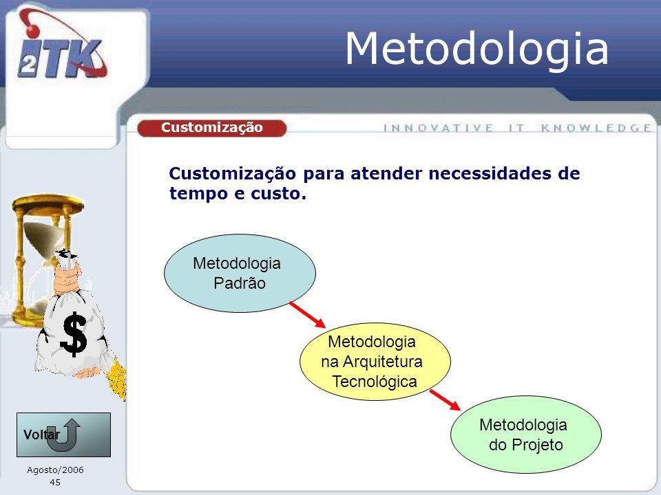 Metodologia Customização para atender necessidades de tempo e custo.