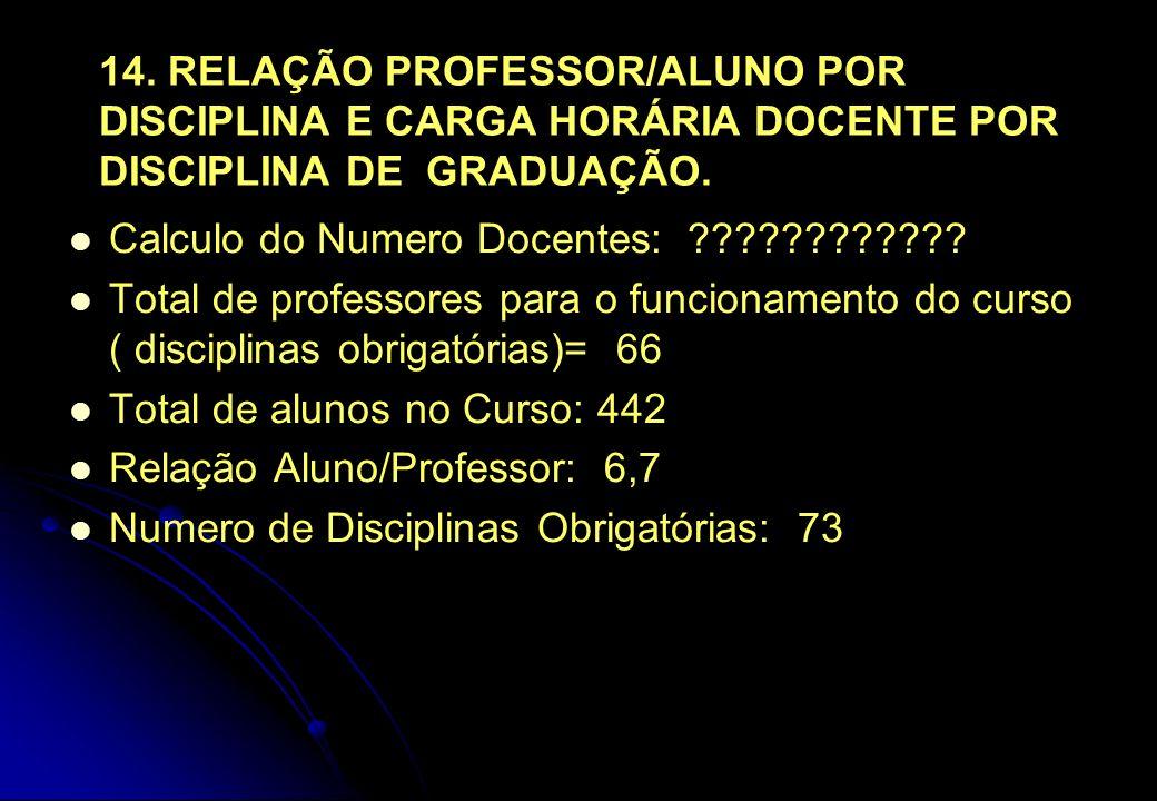 14. RELAÇÃO PROFESSOR/ALUNO POR DISCIPLINA E CARGA HORÁRIA DOCENTE POR DISCIPLINA DE GRADUAÇÃO.