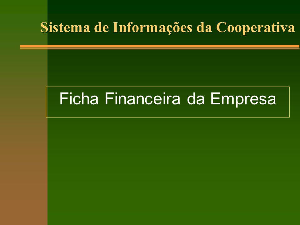 Ficha Financeira da Empresa